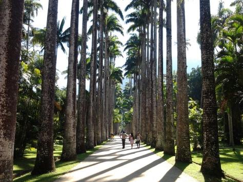 Botanical Gardens. Credit Aleia_Barbosa_Rodrigues,